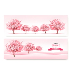 Three spring banners with pink cherry blossom vector