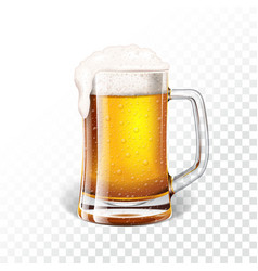 With fresh lager beer in a beer mug on vector