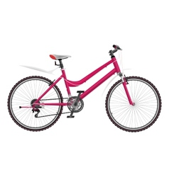 Ladys pink bike isolated on white background vector