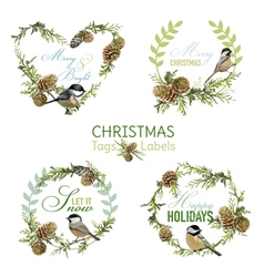 Vintage Christmas Birds - Banners Tags and Labels vector image