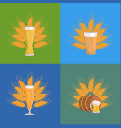 beer glasses with wheat vector image vector image