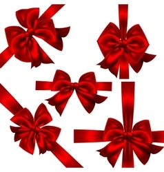 Set of red gift bows Concept vector image vector image