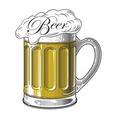 Beer in vintage engraving style vector