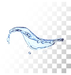 Blue water splash isolated on white vector image