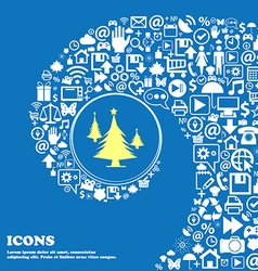 coniferous forest tree fir-tree sign icon Nice vector image