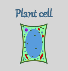 icon in flat style plant cell vector image vector image