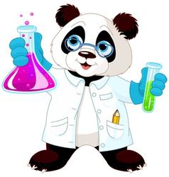 Panda Scientist vector image vector image