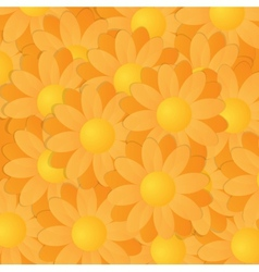 Yellow and orange gerberas vector