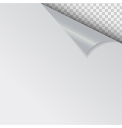 Papers with different corner and place for your vector image vector image