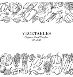 poster template borders with hand drawn vegetables vector image vector image