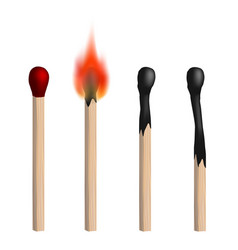 Set of isolated realistic matches vector