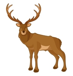 Cartoon smiling deer vector image