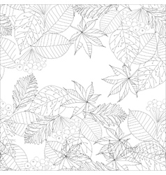 graphic autumn leaves vector image vector image