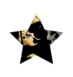 Grunge Black And GoldStar vector image vector image