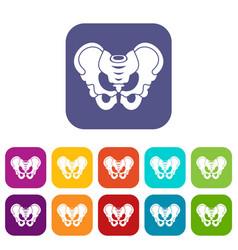 Pelvis icons set vector