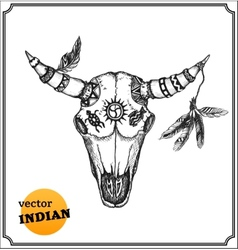 Buffalo skull with feathers for shamans witchcraft vector