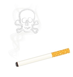 Burning cigarette vector image vector image