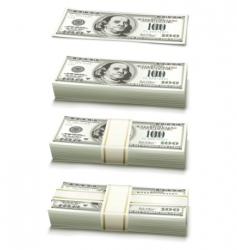 dollar bank notes vector image vector image