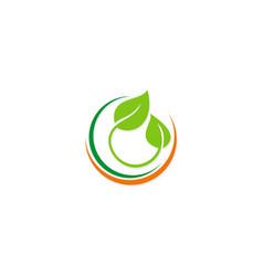 botany green leaf organic logo vector image