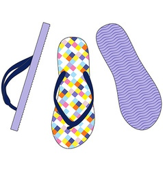 Colorful sandals vector image