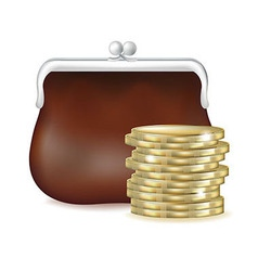 Purse and money vector