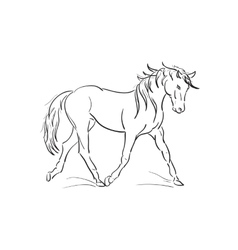 sketch of running horse vector image