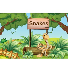 Snakes in the hills beside a wooden signboard vector