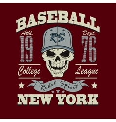 baseball skull t-shirt graphic design vector image