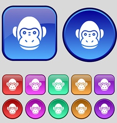 Monkey icon sign A set of twelve vintage buttons vector image vector image