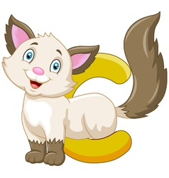 Alphabet c with cat cartoon vector