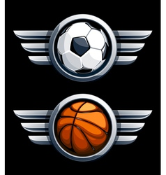 Basketball and soccer balls vector