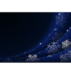 Christmas Snowflakes Curtain vector image vector image