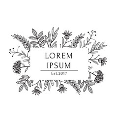 organic white black tea shop label template vector image