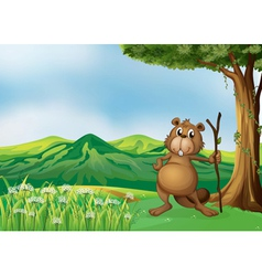 A beaver holding a stick under the tree vector