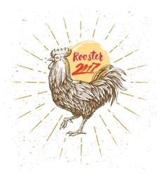 Handmade drawing rooster vector