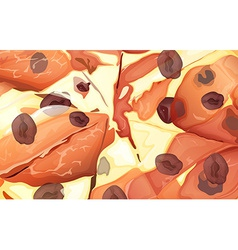 Close-up pizza vector image