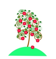 Beautiful apple tree with an apples for your vector image vector image