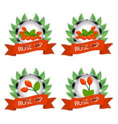 Whole ripe rose hips branch with green leaf vector