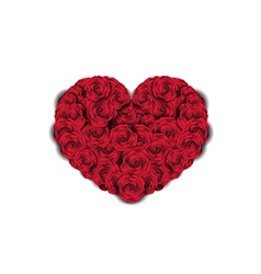 Heart made of Roses vector image