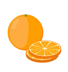 orange and slices cartoon style vegetarian food vector image vector image