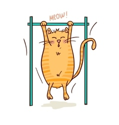 cat and sport vector image