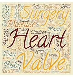 Congenital heart disease open heart surgery for vector