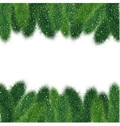 christmas fir tree borders vector image