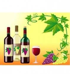 Wine illustration vector