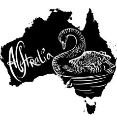 Black swan cygnus atratus on map of australia vector