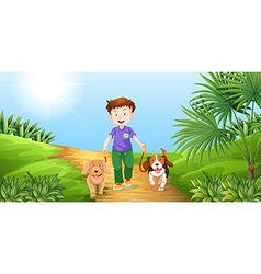 Boy taking dogs for walk in the park vector