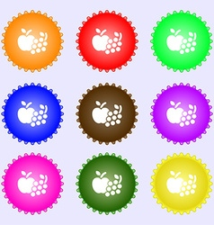 Fruits web icons sign big set of colorful diverse vector