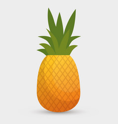 pineapple tropical fruit icon vector image