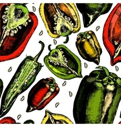 Set of peppers vector image vector image