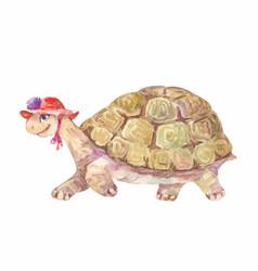 Watercolor turtle vector